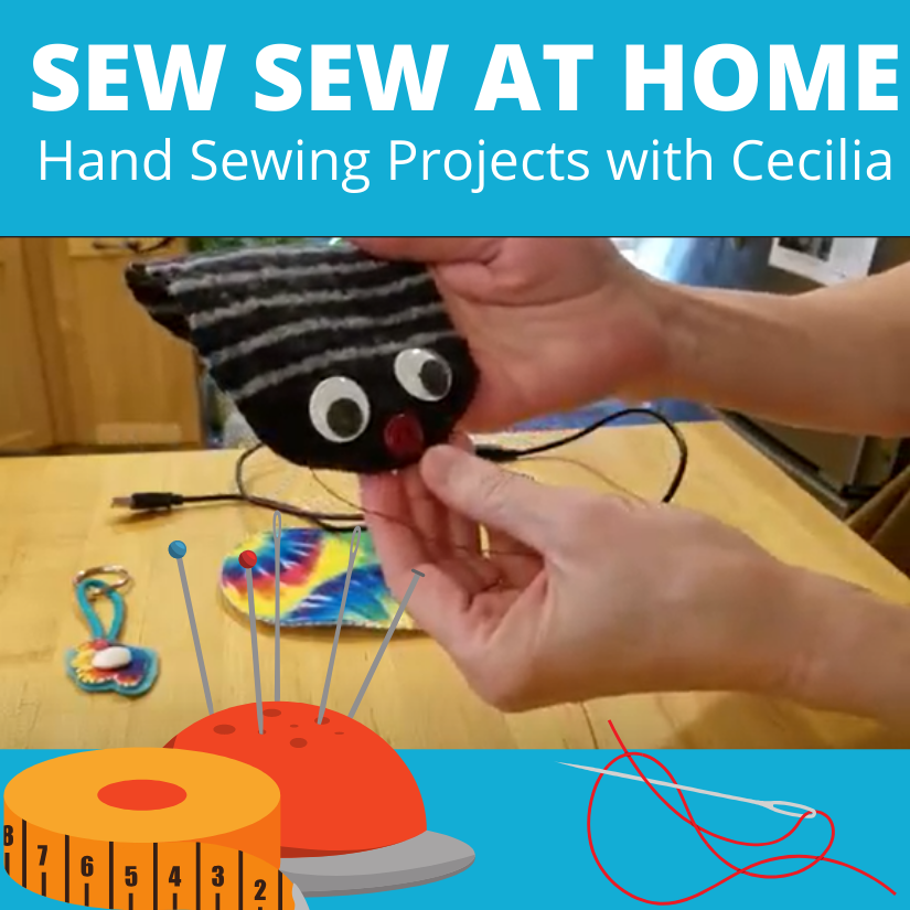 Sew Sew at Home: Hand Sewing Projects with Cecilia